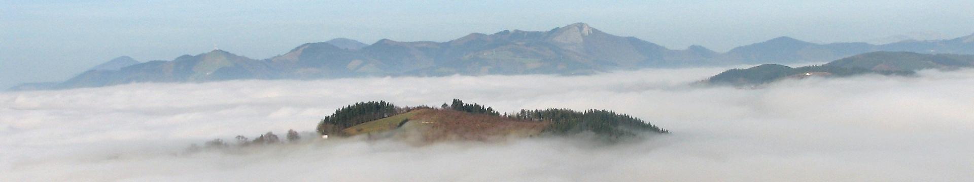 Lo que emerge tras la niebla